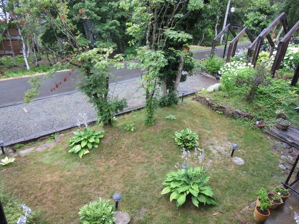 朝から小雨。久々の天の恵みに草木もホット・・・