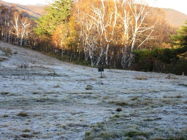 一面霜に覆われたゲレンデ